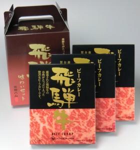 飛騨牛味わいセット(カレー3個)